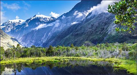 relocate newzealand