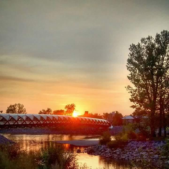 Prince Island Park Calgary Globalforce walk blog